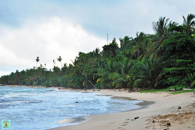 Playa de Punta Uva en Manzanillo, Costa Rica