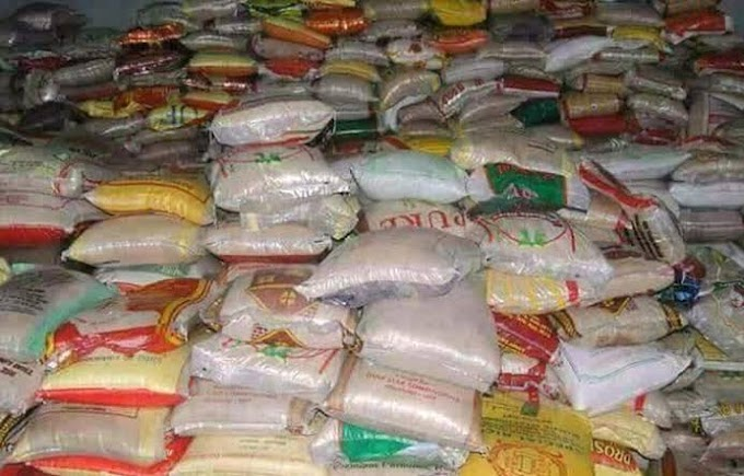 Shock As Niger Assembly Discovers Food, Other Items Meant For Palliative Stacked In Secret Warehouses