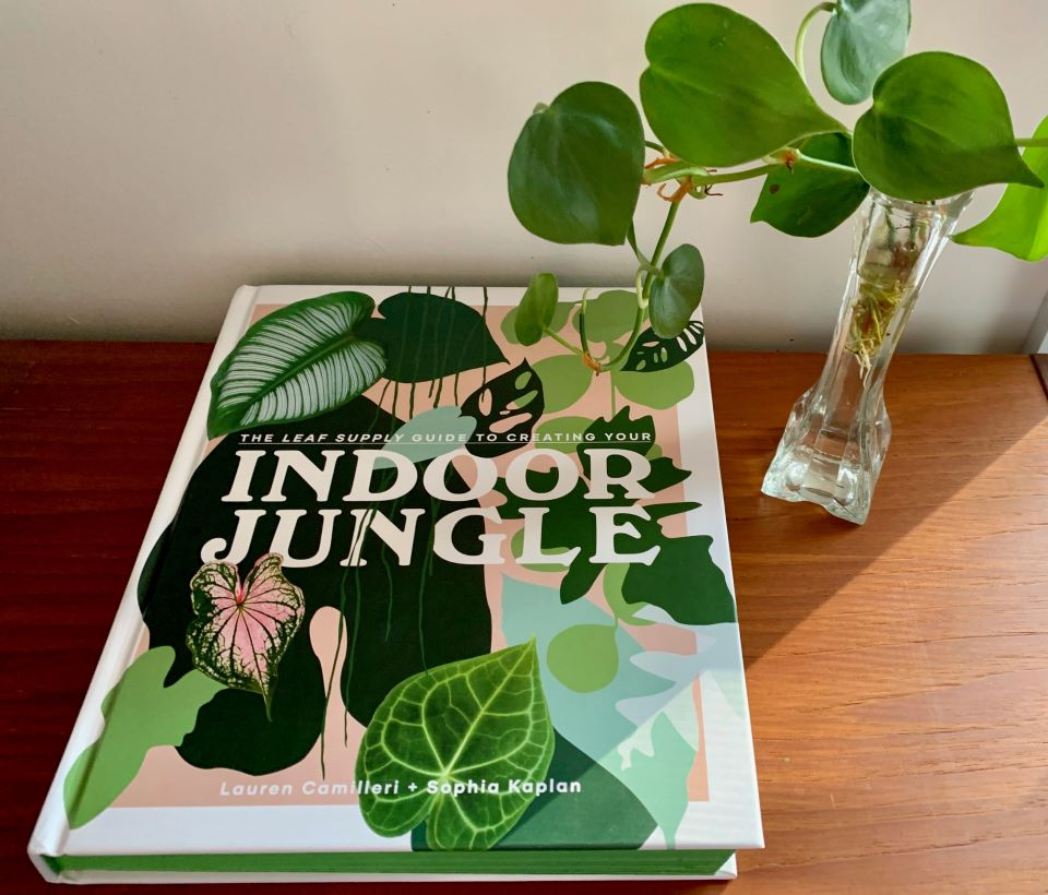 Indoor jungle book review & Giveaway