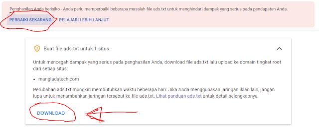 download ads.txt adsense