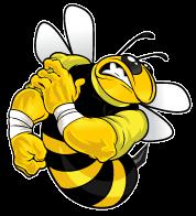 Παχιές δυνατές και κοκαλιάρικες αδύναμες μέλισσες