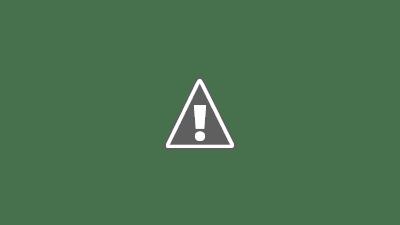 彌久賀神社-社と丸い石