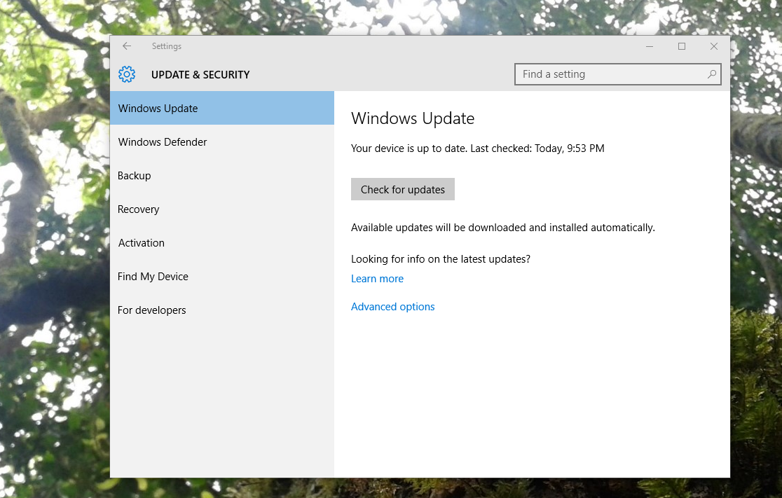disable windows 10 update permanently