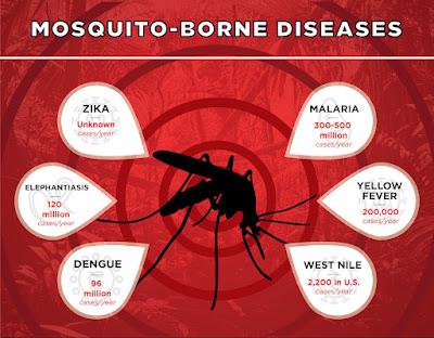 Wie man sich auf Reisen mit drei einfachen Schritten vor von Mücken übertragenen Krankheiten wie Zika, Malaria, Gelbfieber, West-Nil, Dengue, Elefantiasis, Zika, Chikungunya schützen kann