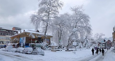Χιονοθύελλες σαρώνουν την βορειοανατολική Τουρκία (video&photos)