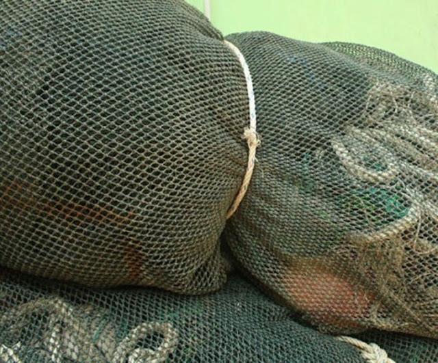 Puluhan Pukat Trawl Mini Beroperasi Di Sei Berombang