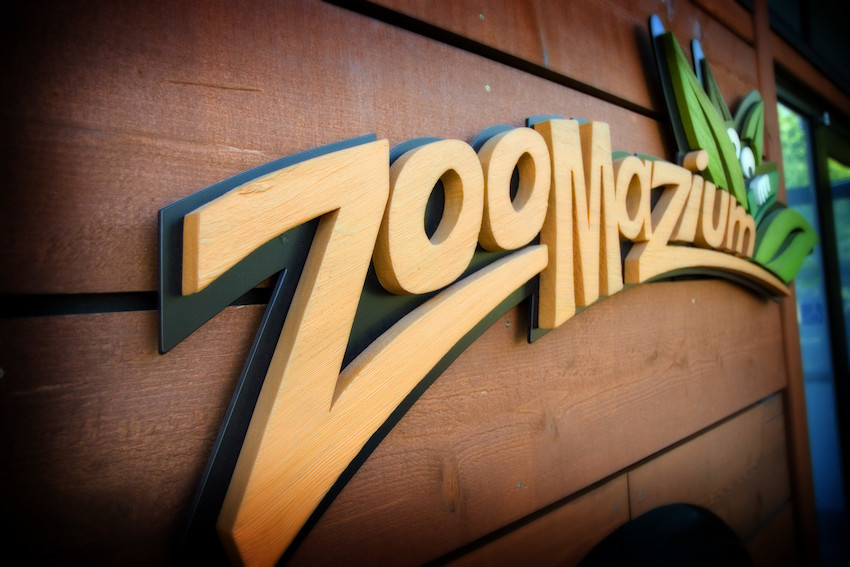 Woodland Park Zoo Blog Zoomazium turns 10 and youre invited to