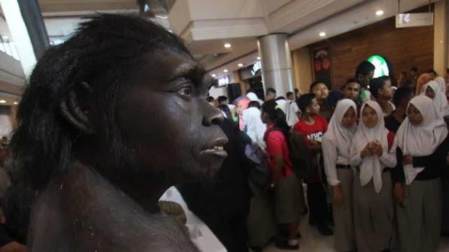 Ciri dan jenis manusia purba di indonesia