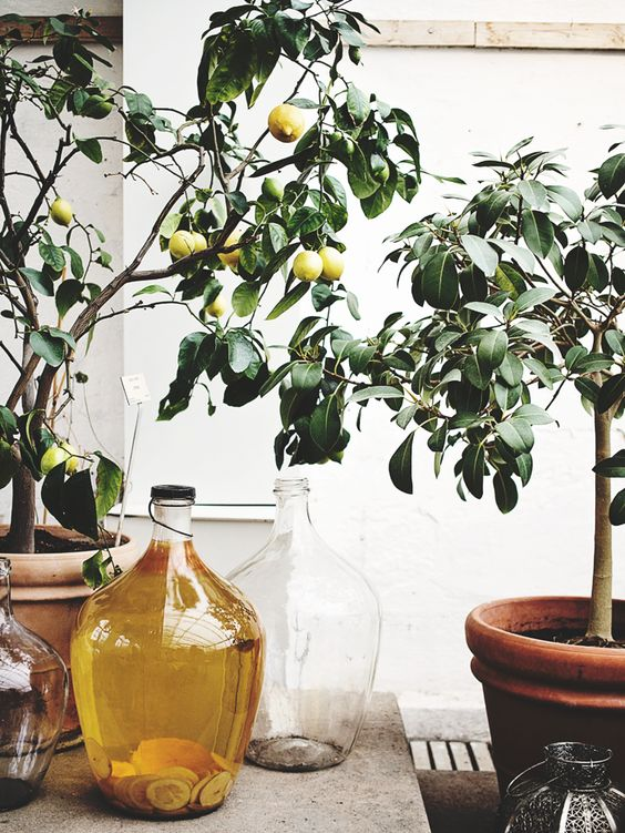 Yellow Ochre is The It Color Of The Summer-design addict mom #lemontree