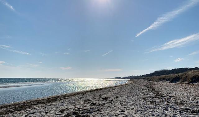 Stranden vid Falsterbo strandbad