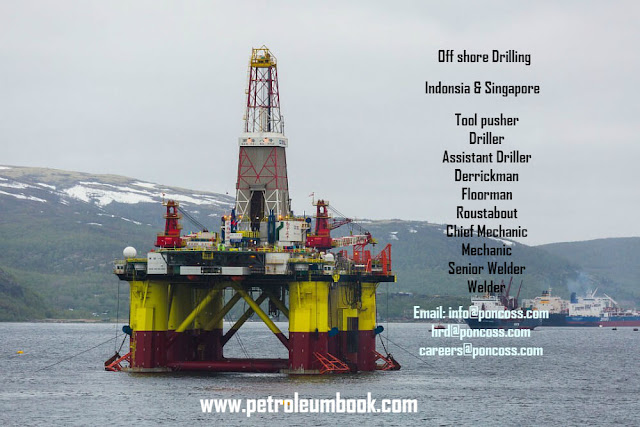 www.petroleumbook.com
