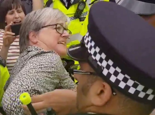 London Assembly member arrested at Brexit protest