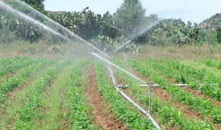 صور الزراعة