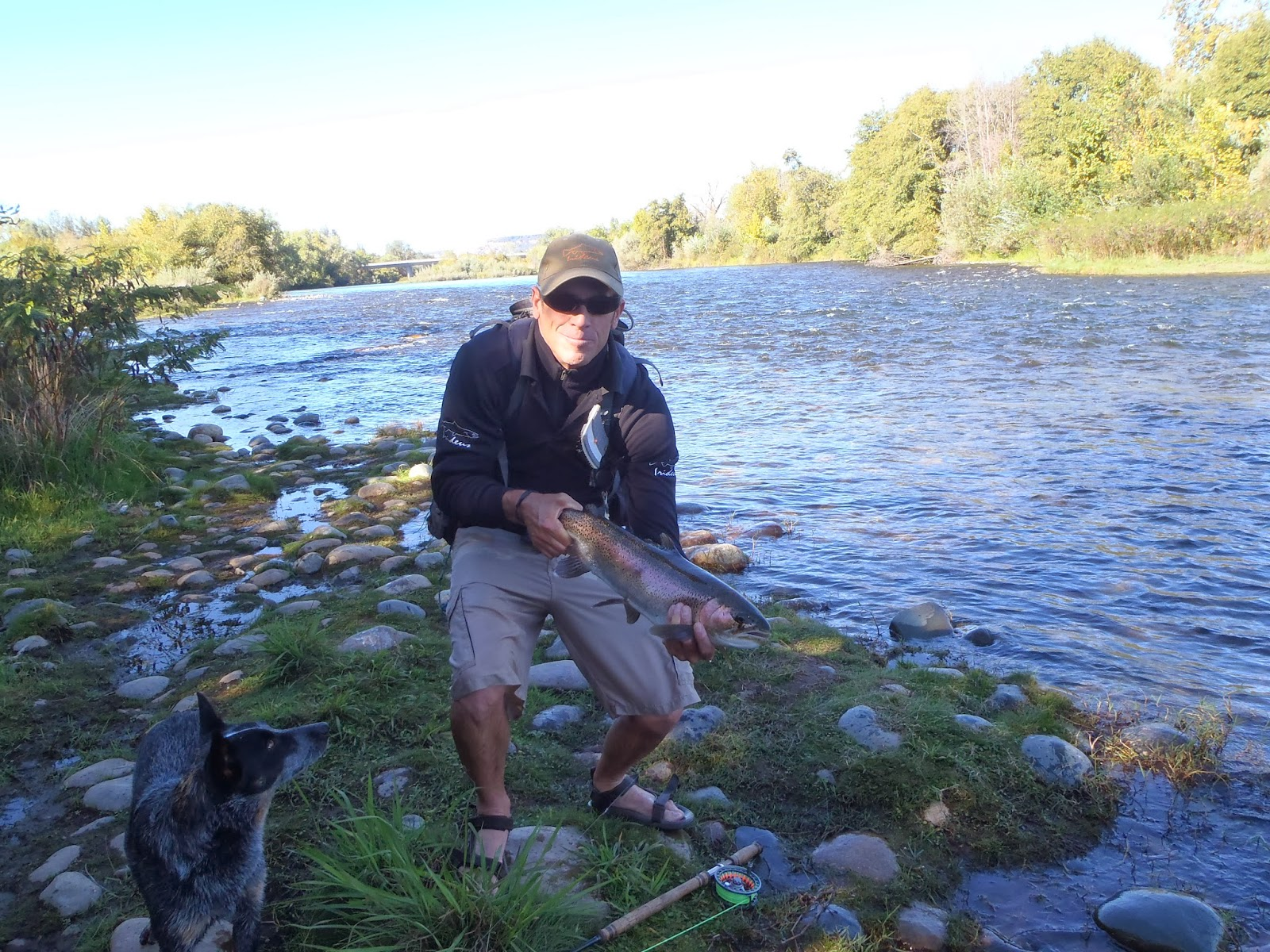 Irideus fly fishing products indicator fly fishing for for Trout fishing california