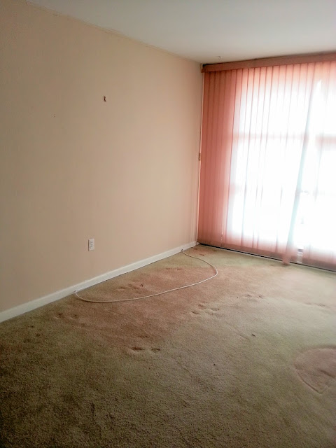 living room before carpet window blinds tan pink