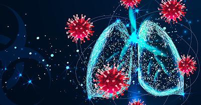 ¿Cómo funciona sistema inmune?