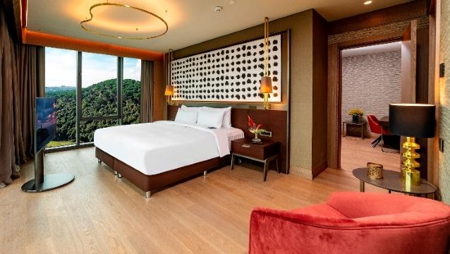 Radisson Blu Hotel Vadistanbul