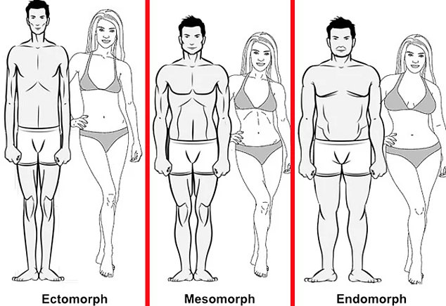 Do You Know How To Eat And Exercise According To Your Body Type?