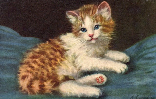 bumble button: Very cute Victorian cat and kitten pictures ...