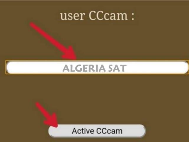 Cccam2020