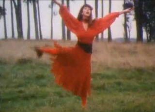musica de los 80 kate bush wuthering heights