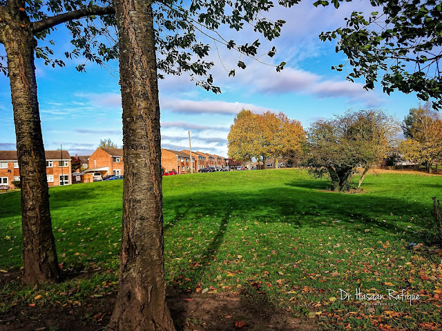 Photo: Coventry Greens
