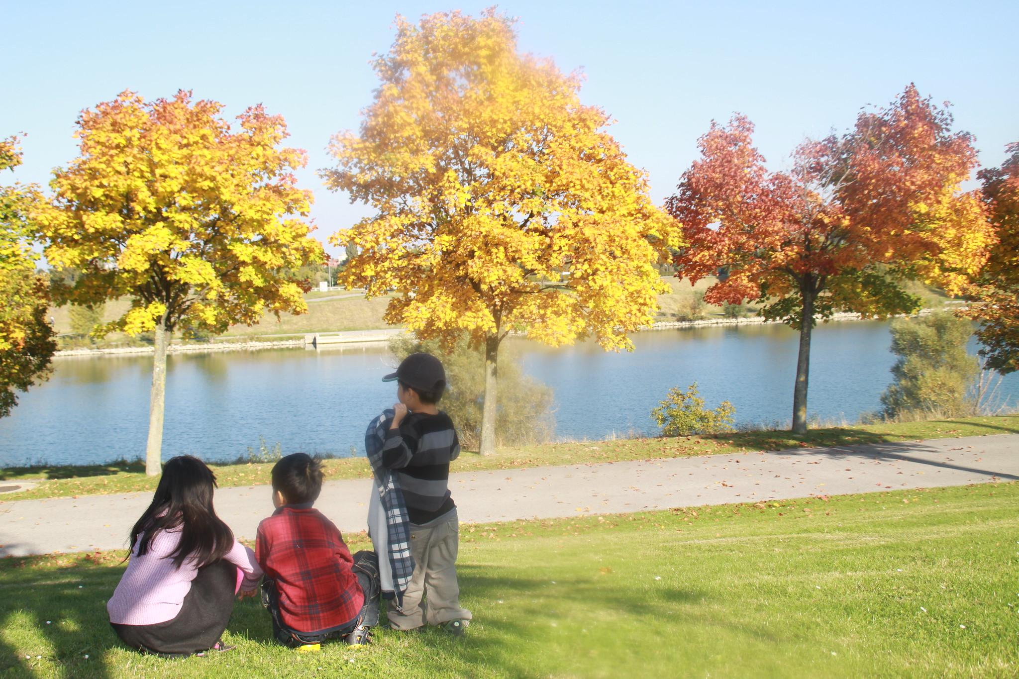 autumn kids danube