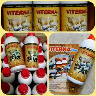 vitamin ikan patin, ikan patin, ikan patin, ikan patin, jual ikan patin, kolam ikan patin, budidaya ikan patin, pakan ikan patin