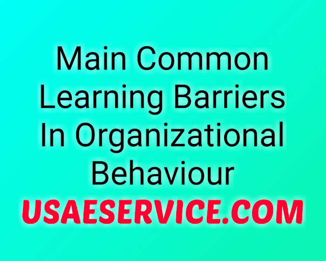 Common Learning Barriers