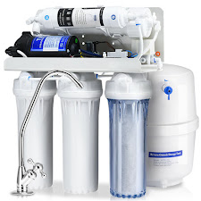 vandens filtrai buičiai