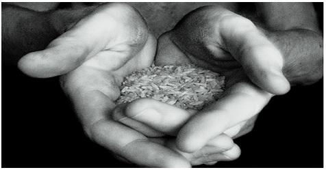 Sering Dilakukan Tanpa Disadari, Ternyata Perbuatan Ini Bisa Menghilangkan Keberkahan Makanan