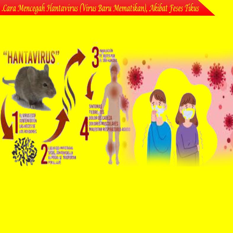 Gejala Hantavirus dengan Virus Corona, Hampir Sama. Ini Bedanya