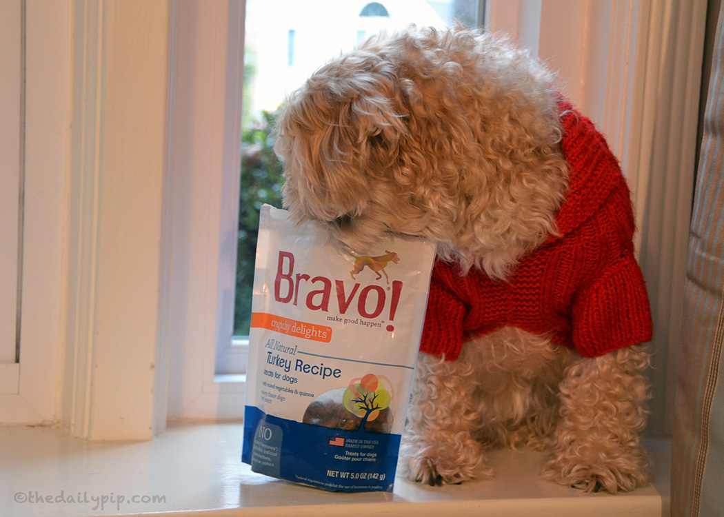 Ruby's review of  Bravo Turkey recipe treats for dogs for Holidays, Hounds, and Hot Buys Giveaway