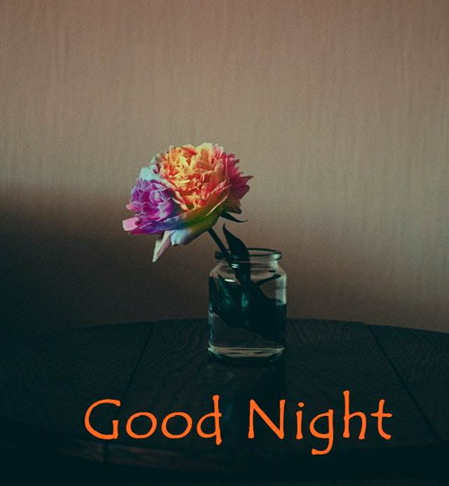good-night-flower-images-hd