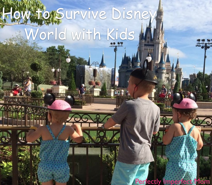 Family Moments: How to Survive Disney World with Kids