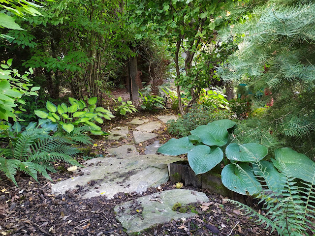 ścieżka z łupka, ogród leśny