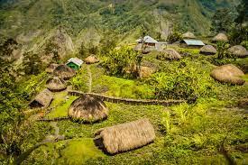 Papua mentari harapan baru dari timur