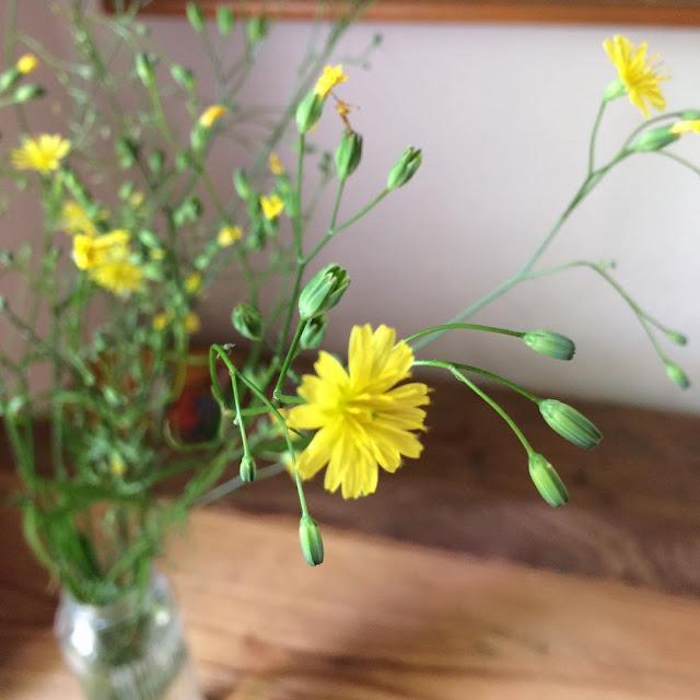 die guten Dinge Blog Blumen, Wochenrückblick, essay, leben mit Kindern