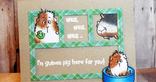Guinea Pig here for you card featuring Gerda Steiner Designs