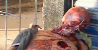 Borderland Beat: Terror in Tepic: Two Men Skinned Alive