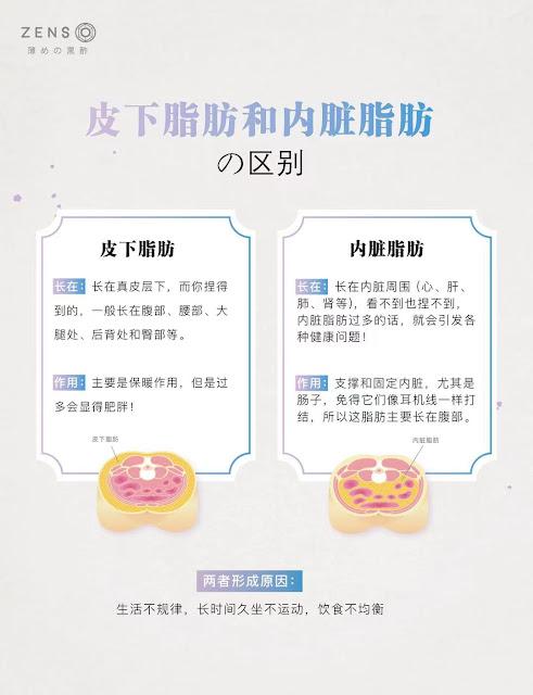 皮下脂肪和内脏脂肪的区别 ZensoDiet