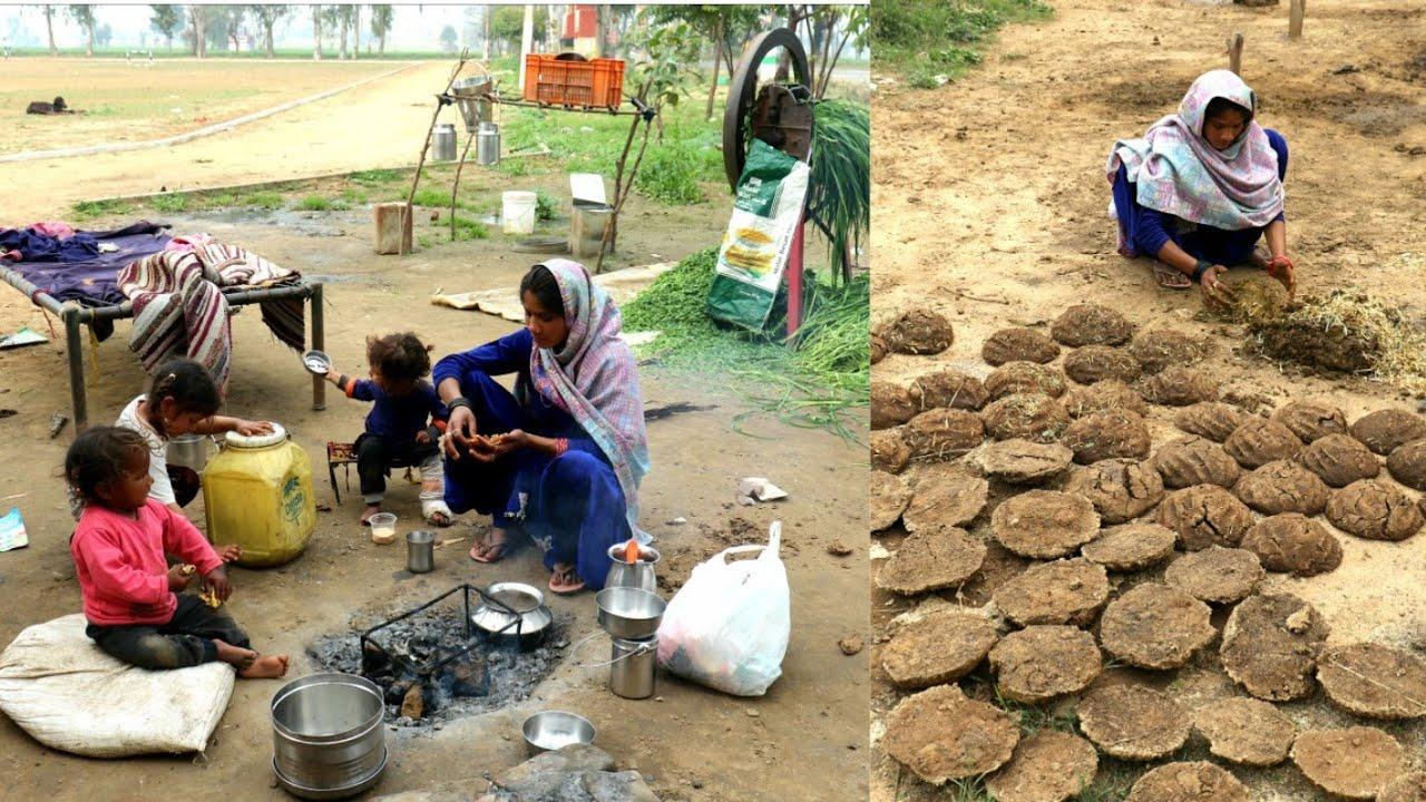 Village life -Village life in Pakistan essay