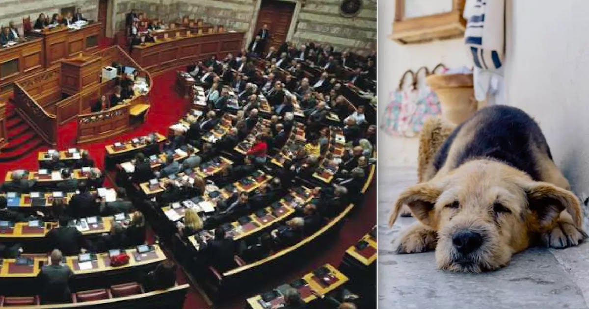 Greek Parliament Passes Law Sentencing Animal Abusers To Up To 10 Years In Prison