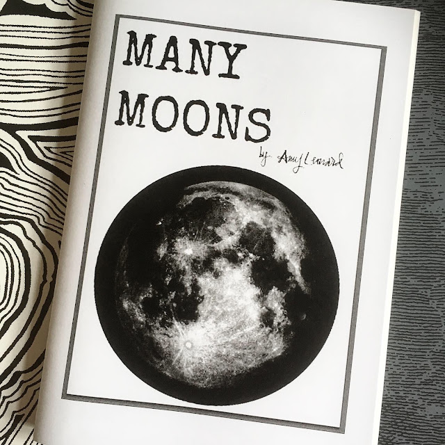 many moons zine by amy leonard