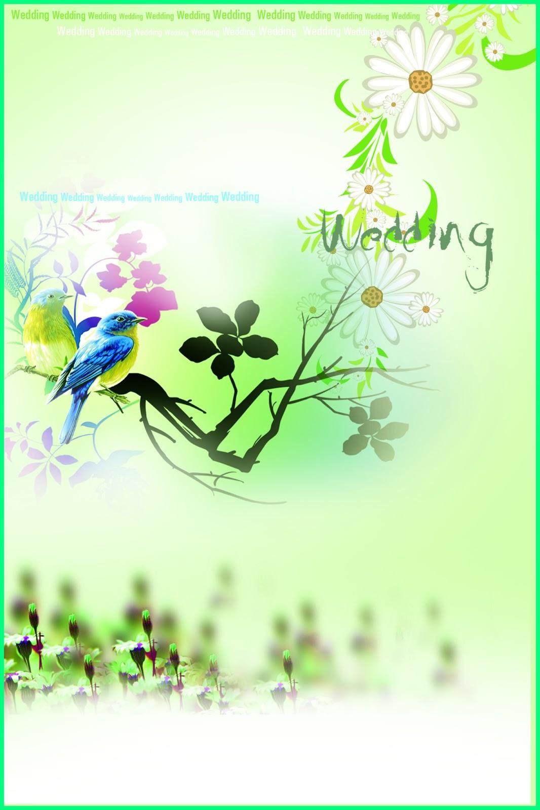 wedding backgrounds  abdonlinemedia