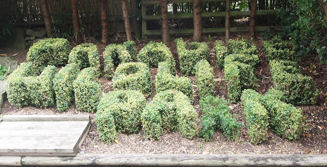 Paradise Wildlife Park, Hertfordshire. Topiary bushes.