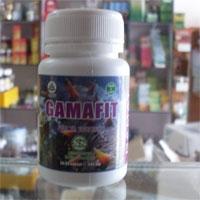 Kapsul GAMAFIT