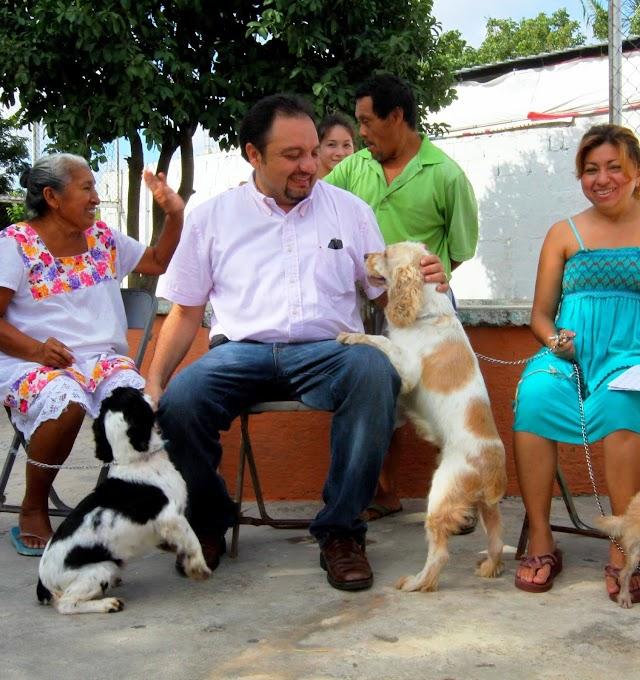 Mil 32 mdp para bienestar animal