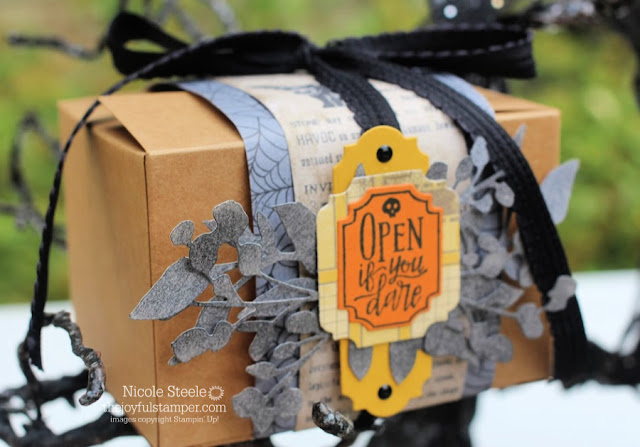 Day 6 - Open If You Dare Mini Shipping Box by Nicole Steele The Joyful Stamper