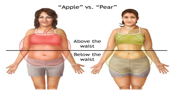 medicamentos para bajar la grasa corporal